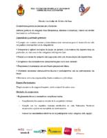 Disseny curricular àrbitre base RFEBM